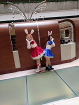 Cute bunny girls from ??